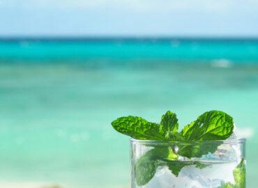 Der Rum mit H – Rhum Agricole