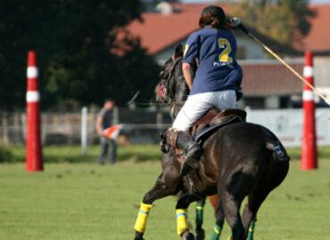Gentleman-Sport: Polo