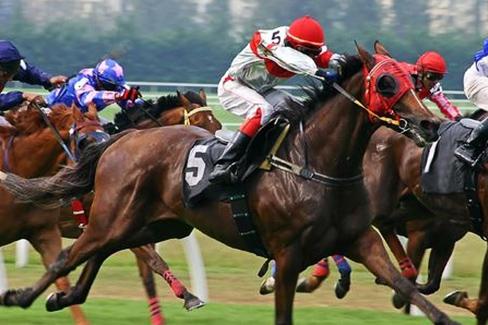 Ascot – Pferderennen zwischen Tradition und Moderne